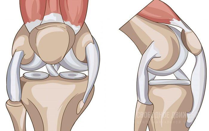 Ощущение расхлчбаности в коленном суставе болят кости и суставы