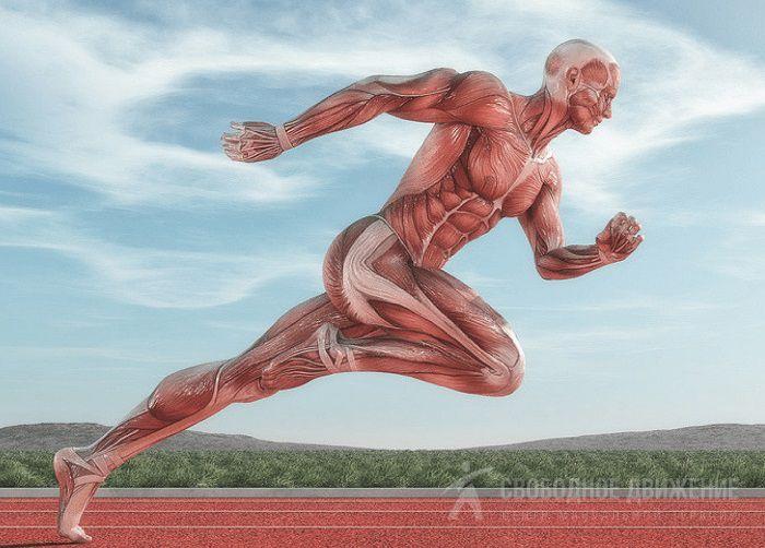 Дергается нога - Спазмы(судороги)